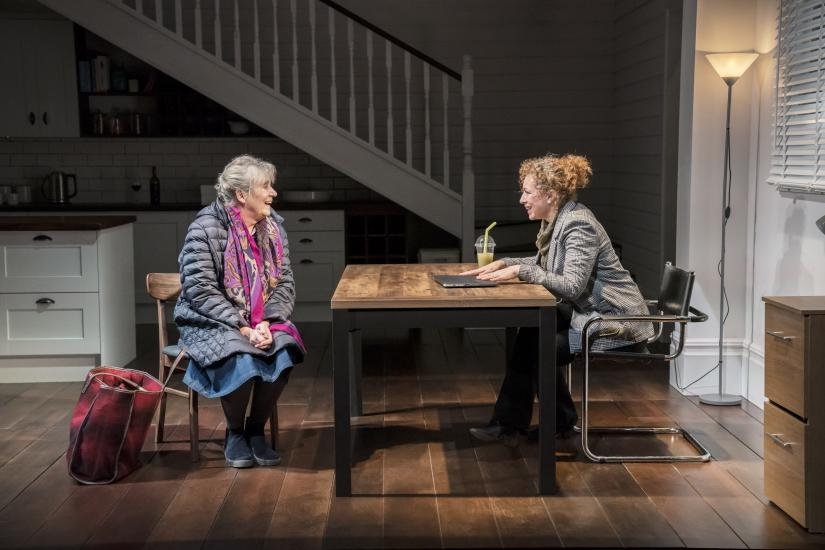 Two women discuss over a dining table
