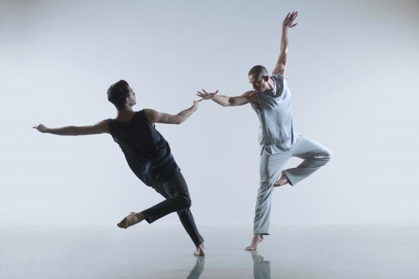Two male ballet dancers